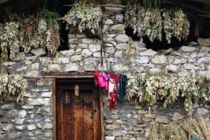 bhutanese home