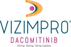 Vizimpro-logo